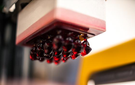 Kronen in Asiga SuperCast gedruckt auf einem Asiga Freeform PICO